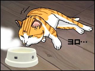 006ヨロッと起き上がる猫