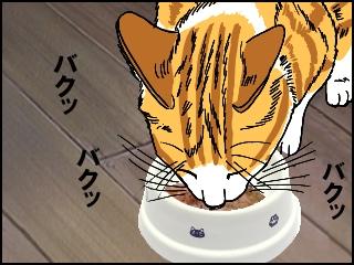 012がつがつ食べる猫1