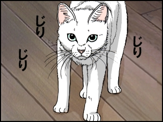 024猫近づく