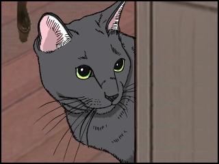 022猫のぞく