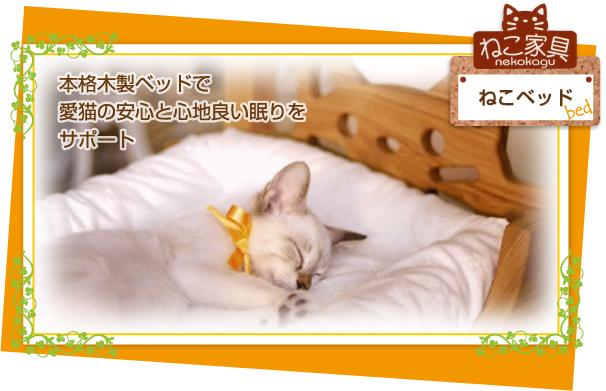 bed_topimg.jpg