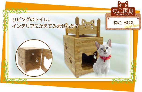 box_topimg_20100807103118.jpg