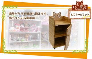cabinet_topimg.jpg