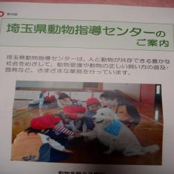 P1221449_convert_20090122193715.jpg