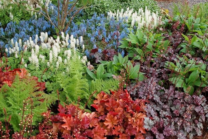 garden_01_4b40.jpg