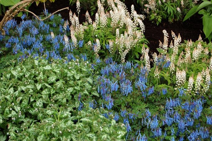 garden_04_07_2001_2b40.jpg