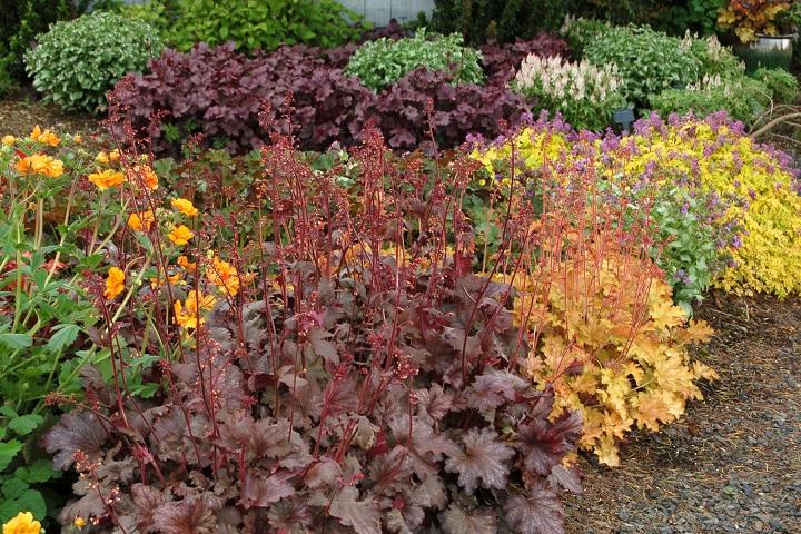 garden_04_07_2001_3b40.jpg