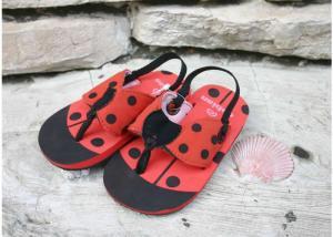 cobian_ladybug.jpg