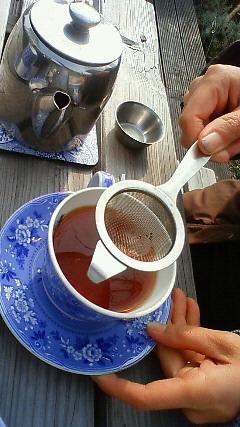 メロー紅茶1