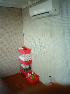 NEC_0077_20110417174612.jpg