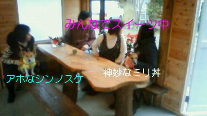 NEC_0396_20091214103259.jpg