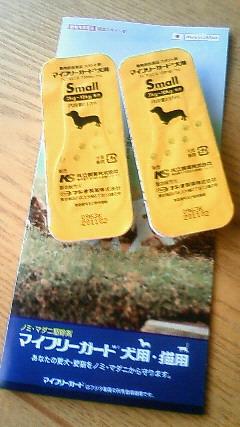 NEC_0700_20100604130044.jpg