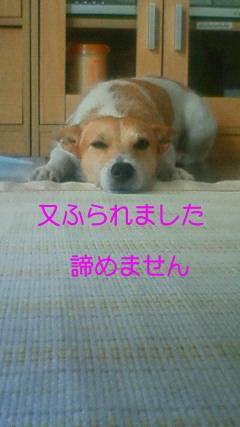 NEC_3869.jpg