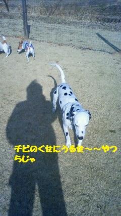 NEC_6013.jpg
