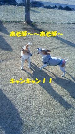NEC_6023.jpg