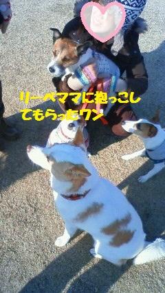 NEC_6024_20120109003217.jpg