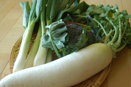 実家の冬野菜2010