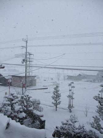 2011正月雪