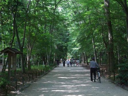 京都2011夏3