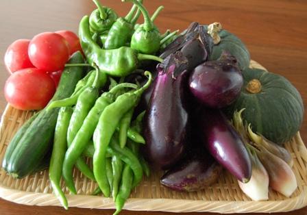 実家野菜2011ete_1