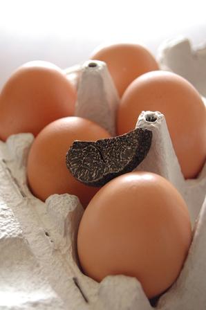 トリュフ卵1
