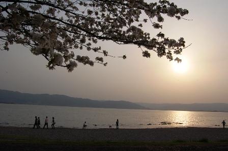 suwa2010_1PG.jpg