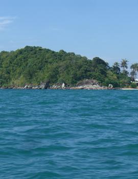 タイ海だけ