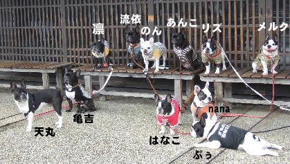 2008_1123近江八幡とonedaycafe0071