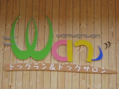 2008_1123近江八幡とonedaycafe0162