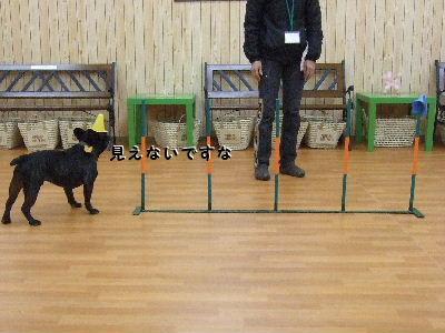 2008_1123近江八幡とonedaycafe0193