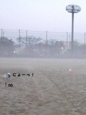 霧 008