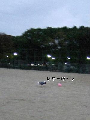 金曜日 006