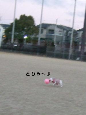 お風呂 010