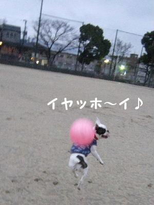 ジャンプ 002