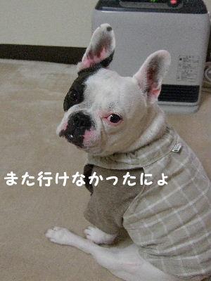 雨 004
