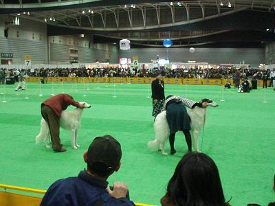 2007.12.22 076