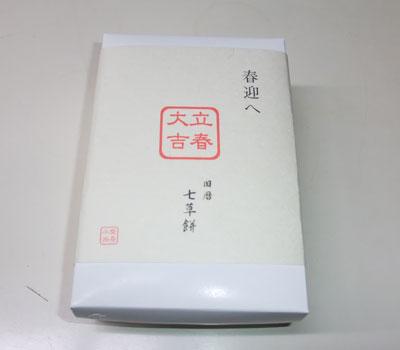 2009-01-31b.jpg