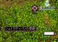RedStone 11.06.24[00]