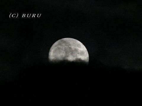 月 (1)1