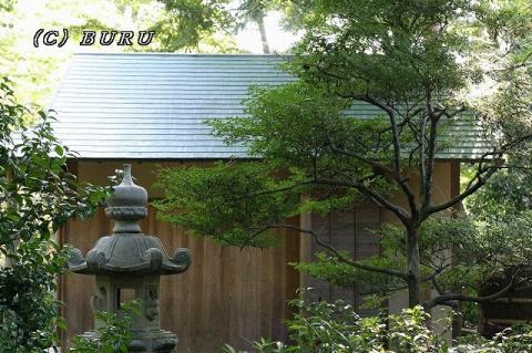 日本庭園 (4)