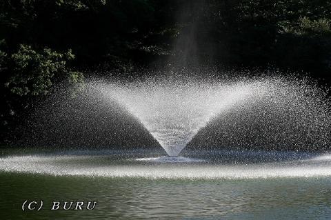 噴水 (3)