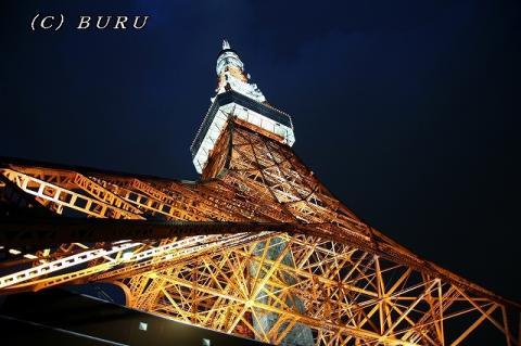 東京タワー (44)