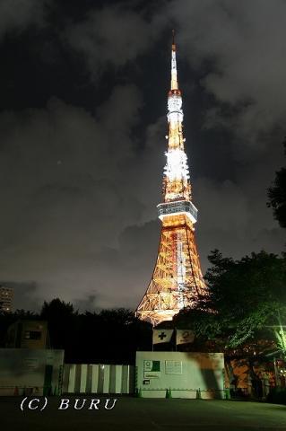 東京タワー (57)