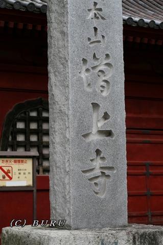 増上寺 (5)