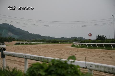 佐賀競馬場景色 (5)1