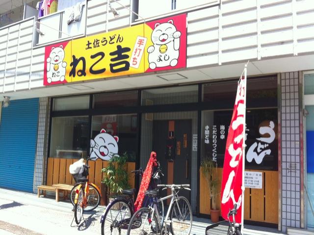 necoyoshi03