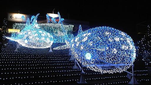 夜の海遊館 クリスマスイルミネーション2008
