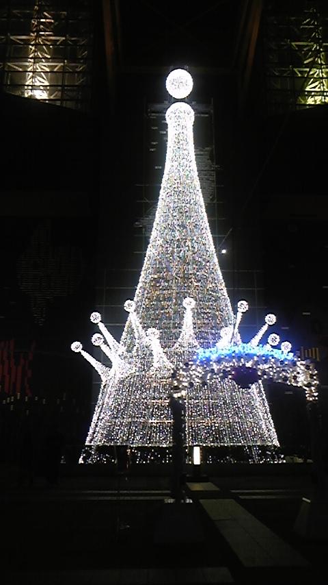 夜の海遊館 クリスマスイルミネーション2008 ツリー ホワイト