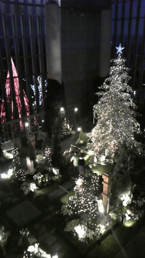 淡路夢舞台 奇跡の星の植物園 クリスマスフラワーショー2008