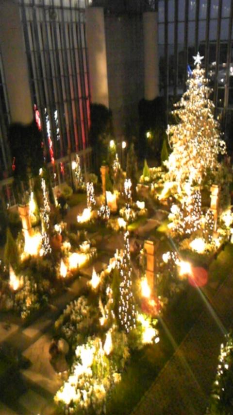 淡路夢舞台 奇跡の星の植物園  クリスマスライトアップ2008